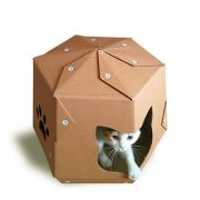 Mars One Cardboard Cat House with cat 1 – let your kitty travel in space
