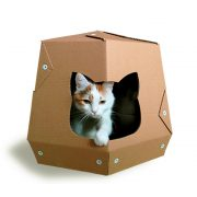 Mars One Cardboard Cat House with cat – let your kitty travel in space