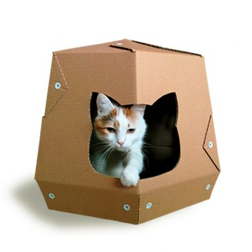Our Cardboard Cat Furniture