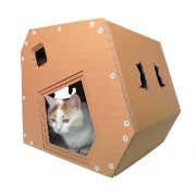 Modern Cardboard Cat House with cat 1 – a modern explorer on a night out