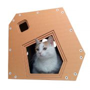 Modern Cardboard Cat House with cat – a modern explorer on a night out