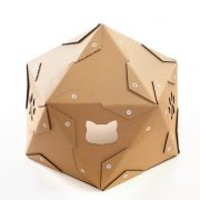 Pentagon Cardboard Cat House with cat – safe haven for unusual pets