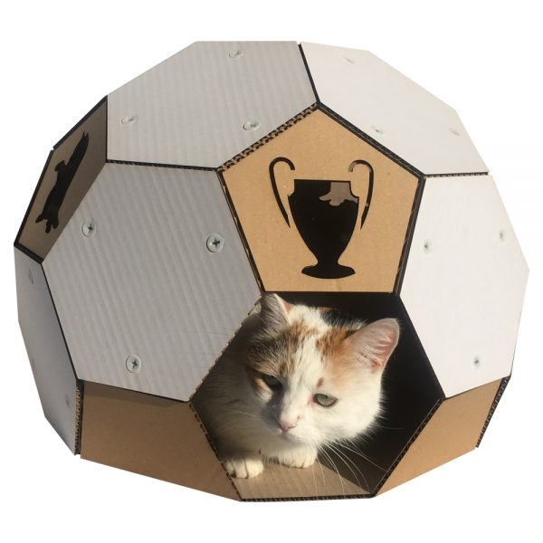 Soccer Cardboard Cat House front with cat1
