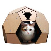 Soccer Cardboard Cat House front with cat – football outside and refuge inside