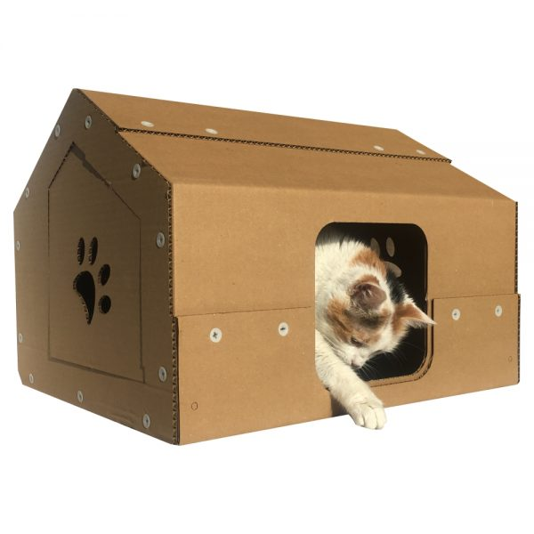Studio Cardboard Cat House with cat1