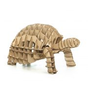 Turtle 3D Cardboard Puzzle front right side