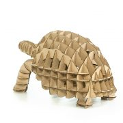 Turtle 3D Cardboard Puzzle rear left