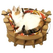 Colliseum Cardboard Cat House with cat3
