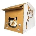 Cool Summer Cardboard Cat House with cat 4