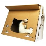 Cool Summer Cardboard Cat House with cat 6