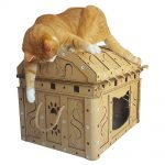 Dead Man's Chest Cardboard Cat House with cat6