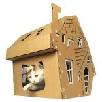 Halloween Cardboard Cat House with cat1
