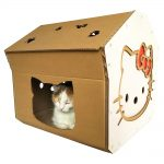 Hello Kitty Cardboard Cat House with cat7