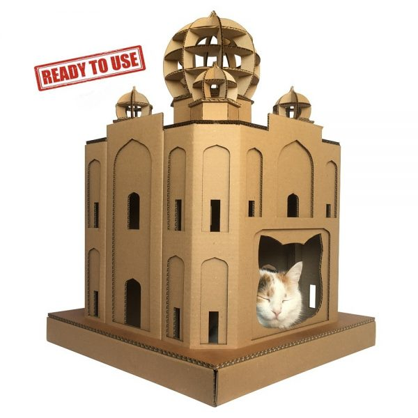 Taj Mahal Cardboard Cat House with cat 3