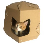 Mars One Cardboard Cat House with cat4