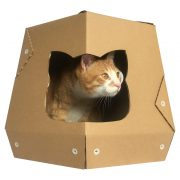 Mars One Cardboard Cat House with cat5