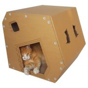 Modern Cardboard Cat House with cat 6