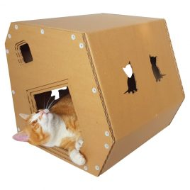Modern Cardboard Cat House with cat 8