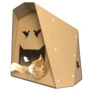 Origami Cardboard Cat House with cat2