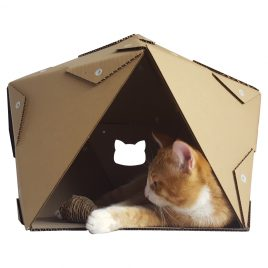 Pentagon Cardboard Cat House with cat1