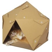 Pentagon Cardboard Cat House with cat3