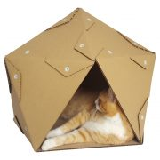 Pentagon Cardboard Cat House with cat4