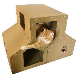 Penthouse Cardboard Cat House wiyh cat1