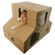 Penthouse Cardboard Cat House wiyh cat2