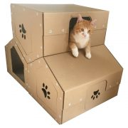 Penthouse Cardboard Cat House wiyh cat3