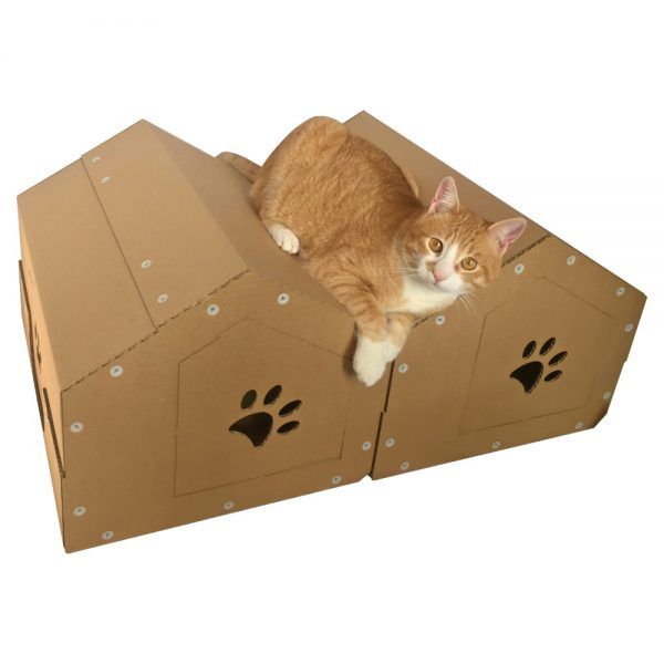 Twins Cardboard Cat House with cat2