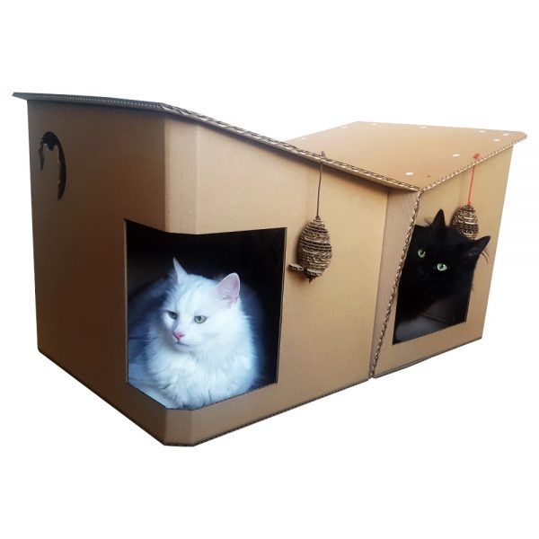 Friends Cardboard Cat House with 2 cats