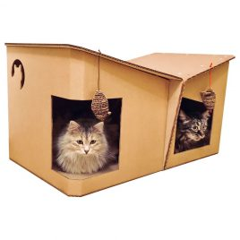 Friends Cardboard Cat House with 2 cats1