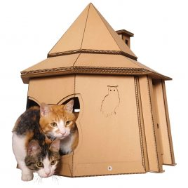 The Good Giant Cardboard Cat House Side entrance cat view