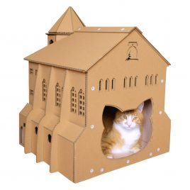 Chuch Cardboard Cat House rear back entrance cat view