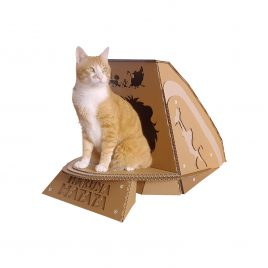 Lion King Cardboard Cat House